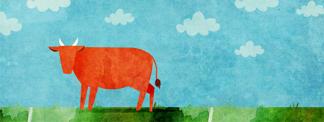 Vaca Vermelha