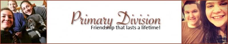 Primary-Division.jpg
