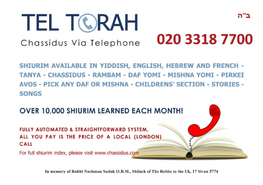 tel torah with book phone.jpg