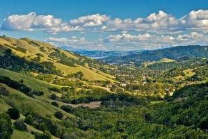 MSY valley.jpg