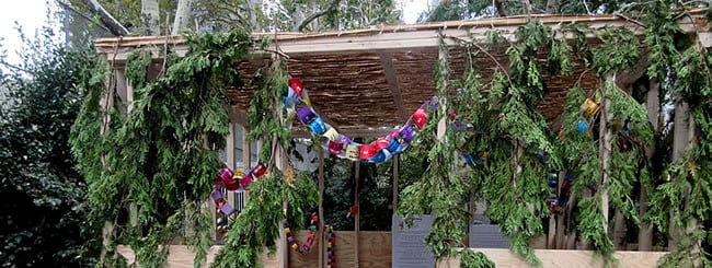 Jewish Holidays: 13 Facts About Sukkot Every Jew Should Know