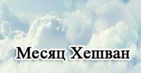 sny_kopiya.jpg