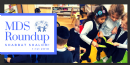 Math, Competition, Long-term Projects and More...  Mazel Roundup eNewsletter No. 13