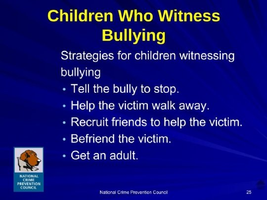 Bullying_For_Parents Maimonides.ppt (11).jpg