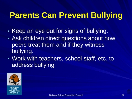 Bullying_For_Parents Maimonides.ppt (9).jpg