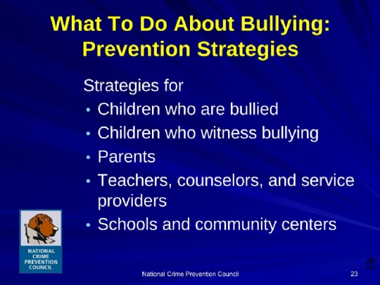 Bullying_For_Parents Maimonides.ppt (13).jpg