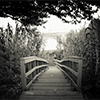 90% מהמריבות אפשר לפתור עם גשר...