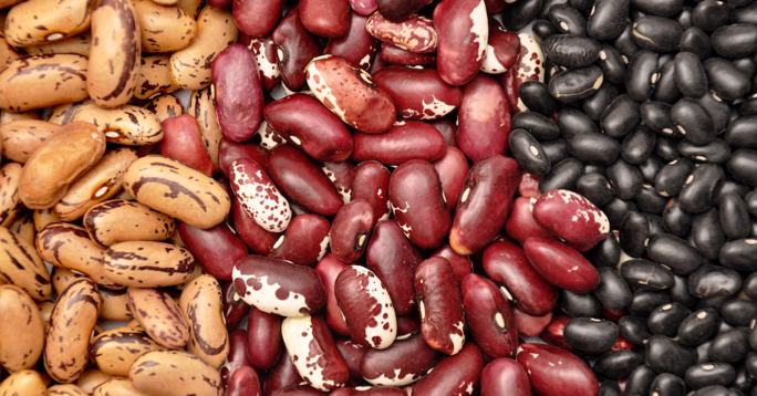 A mixture of beans, all of which fall under the rubric of kitniyot.