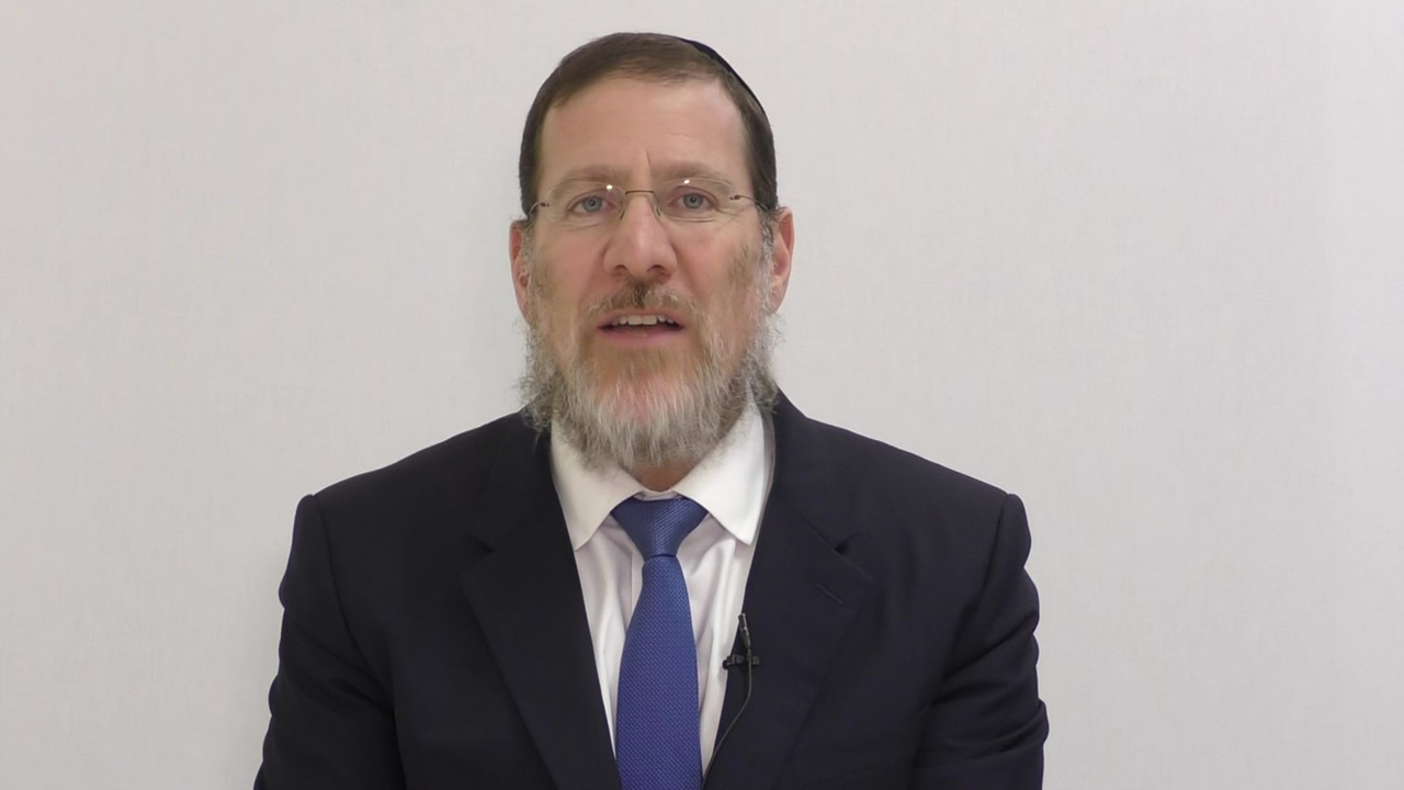 Talmud Daily