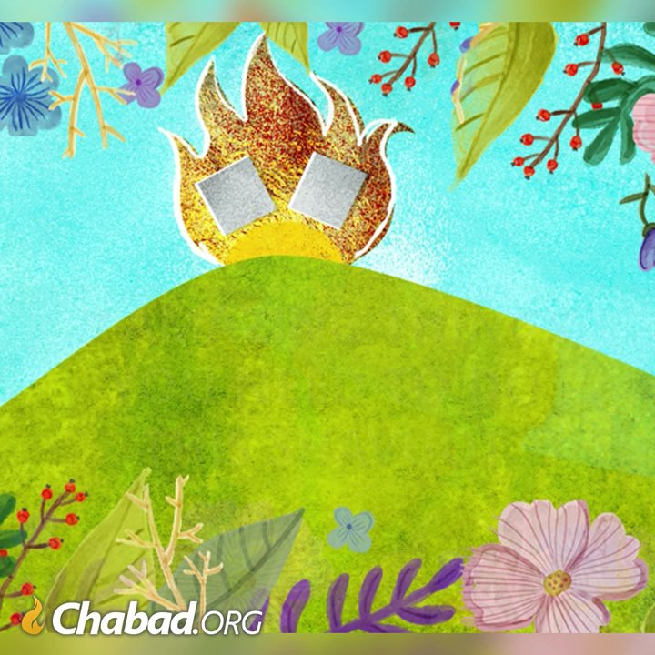 7 Special Things to Do on Shavuot