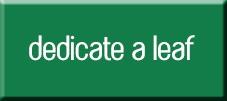 button 5.jpg