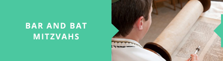 home page buttons bar mitzvah.png
