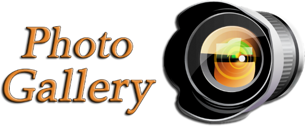 Image result for photo gallery image