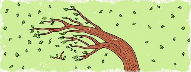 Уроки главы: Деревянный – значит эмоциональный
