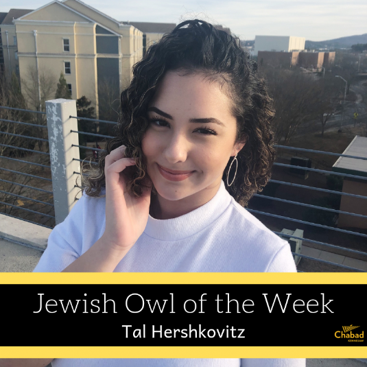 Jewish Owl of the Week-2.png