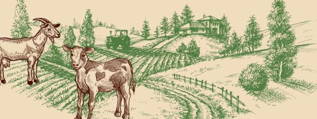 Torah Insights: The Secret Symbolism of the Calf and Goat