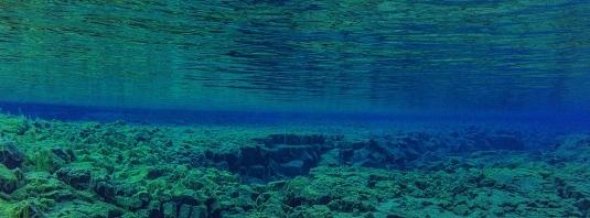 underwater-3237936 small.jpg