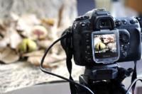 Фотографии кошерных продуктов