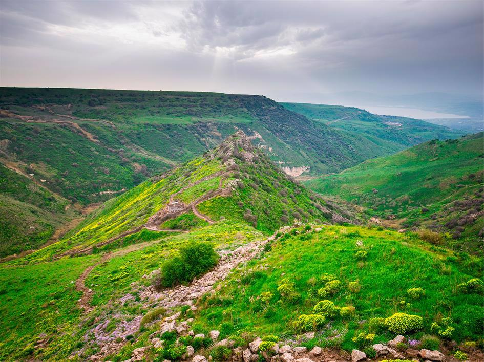 """With the Sea of Galilee in the distance, the shape of Gamla (""""Camel"""") is clearly visible. Sometimes called the Masada of the North, its heroic (and tragic) story continues to inspire."""