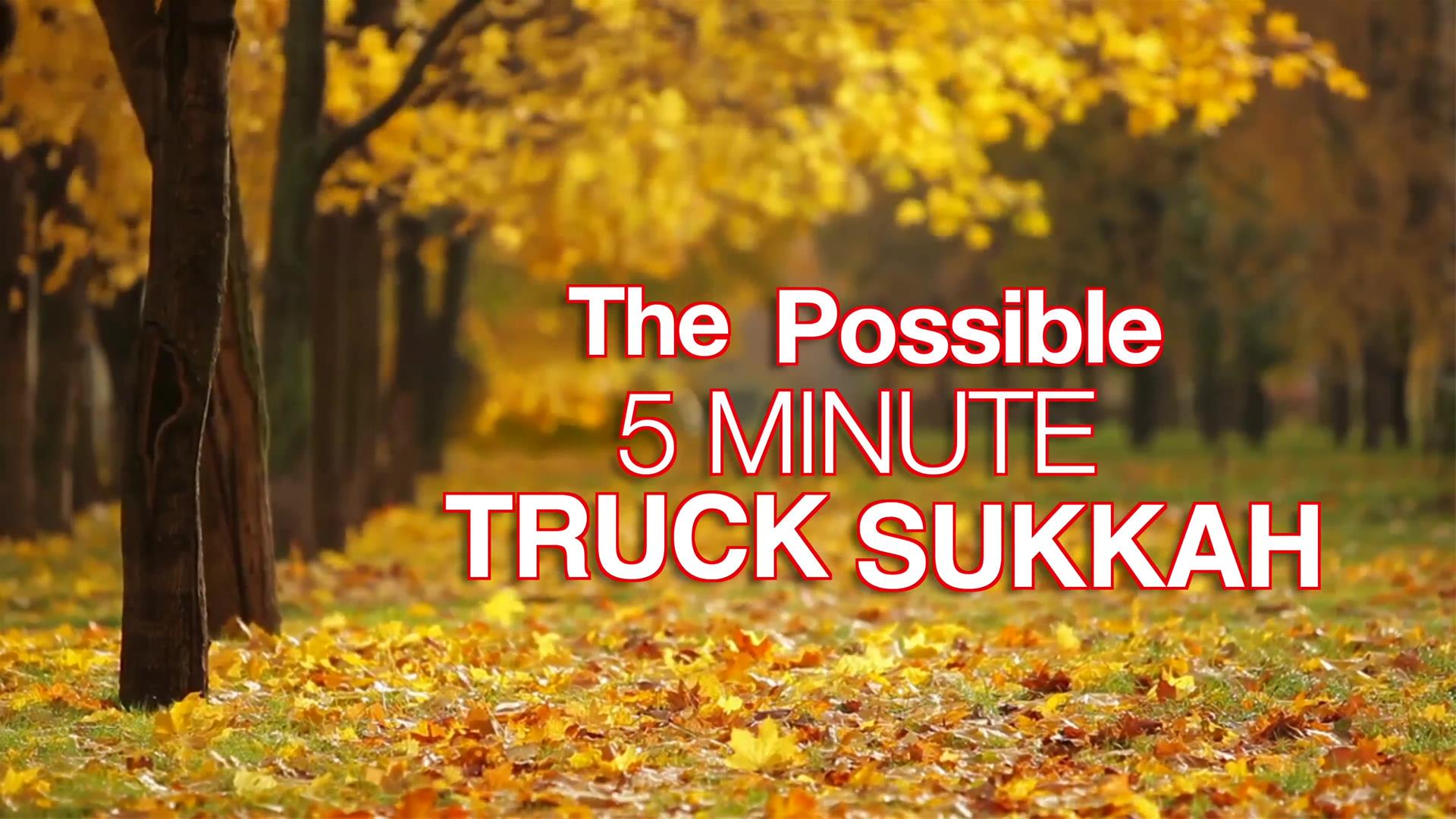 The (Im)possible 5-Minute Truck Sukkah