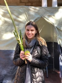 Humans of the Lulav and Etrog