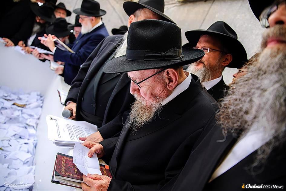 (Photo: Shimi Kutner/Kinus.com)