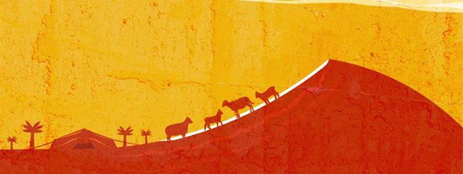 Torah Insights: The Estate of Goshen