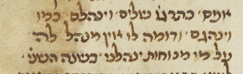 MS. Oppenheim Add. 4° 188.png