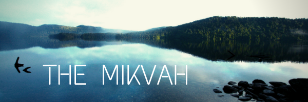 mikvah cover.png