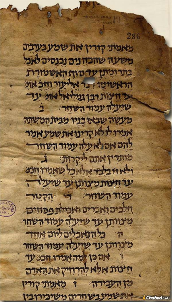Manuscript of the Mishnah dating to the 10th or 11th century from the collection of David Kaufmann.