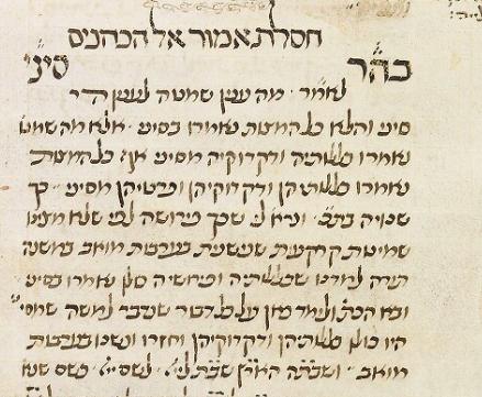 MS. Michael 384, fol. 91.png
