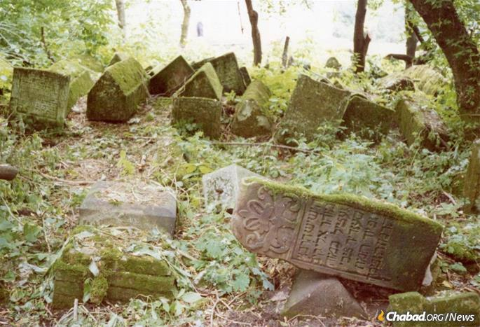 Berdichev's Jewish cemetery, like those in the Soviet Union and throughout the Eastern bloc, was purposefully desecrated and left to the wild, seen here circa 1990. (Photo: Center for Jewish Art)