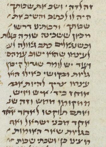 MS. Oppenheim 14 (Nitzavim).png