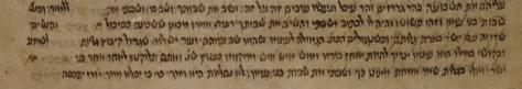 MS. Oppenheim 35 (Nitzavim).png