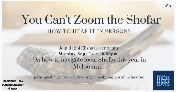 You Can't Zoom the Shofar.png