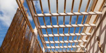 Donate to the MSP Sukkah