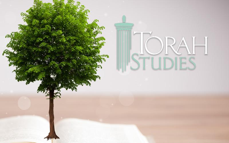torah-studies-img.jpg