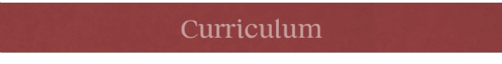 Curriculum thin banner.png