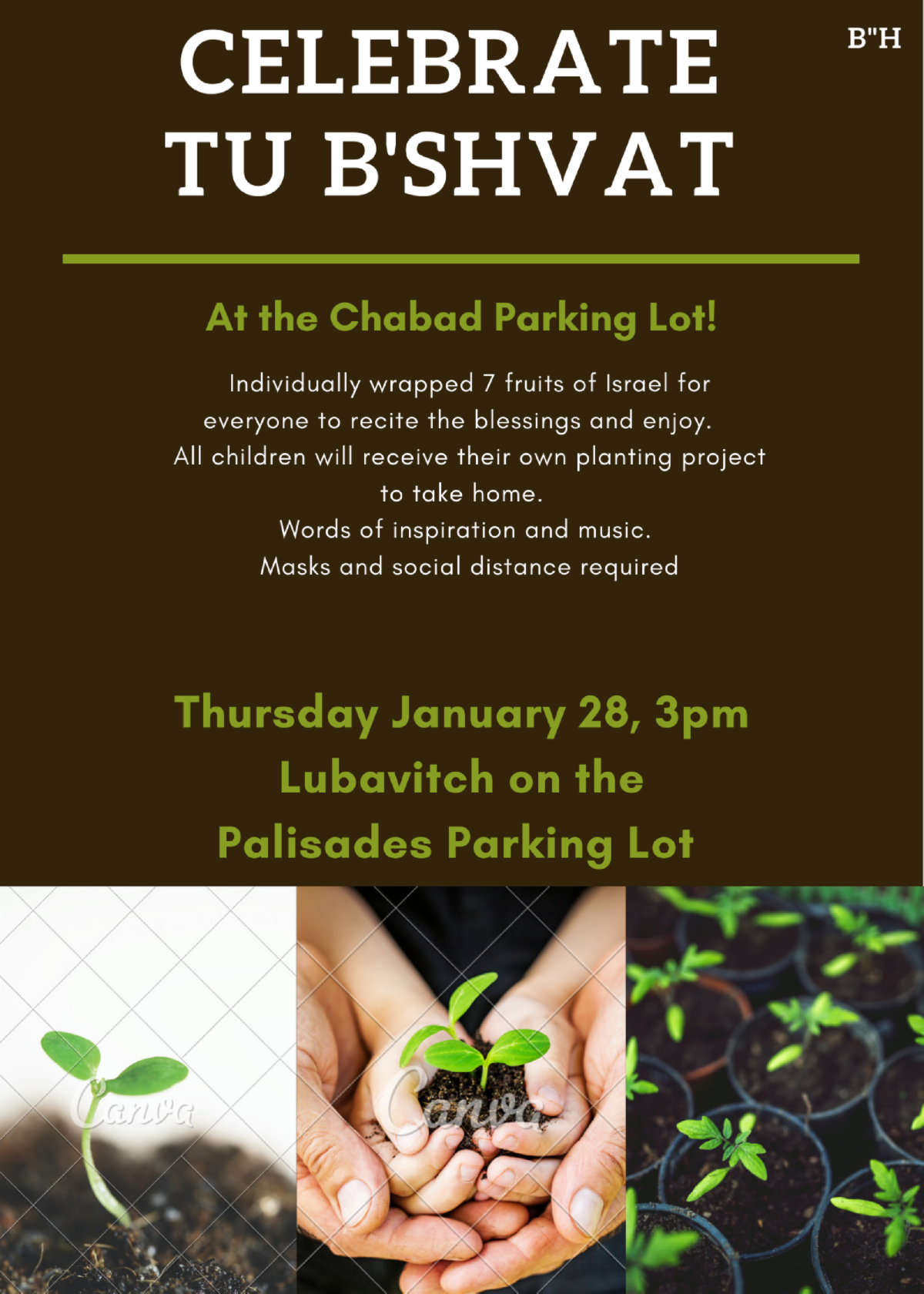Tu bishvat in lot.png