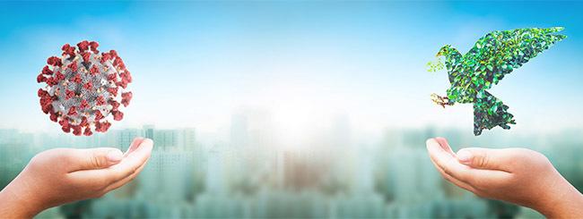 """פרשת """"זכור"""": כמה השתדלות צריך בשביל להשיג הצלחה?"""