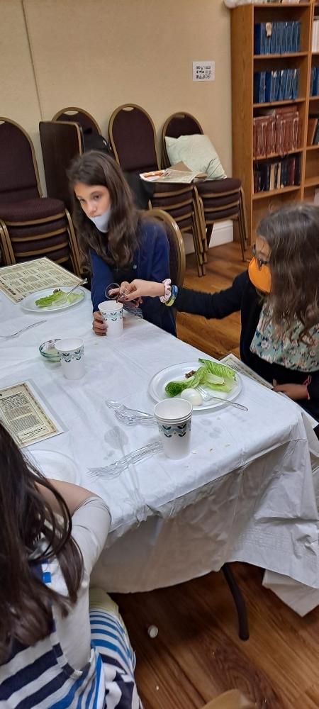Children's Model Seder