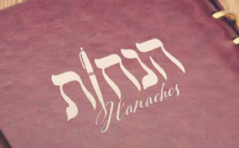 Hanachos Magazine
