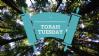 YJP - Outdoor - Torah Tuesday
