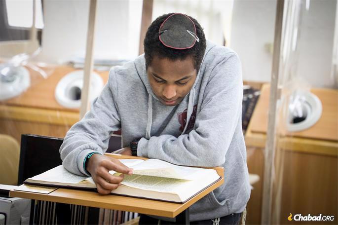 Learning Torah (photo: Gershon Elinson/Flash90)