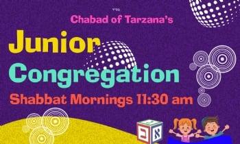 Jr. Congregation