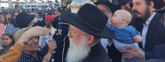 Seventh Children's Sefer Torah Completed Forty Years After First