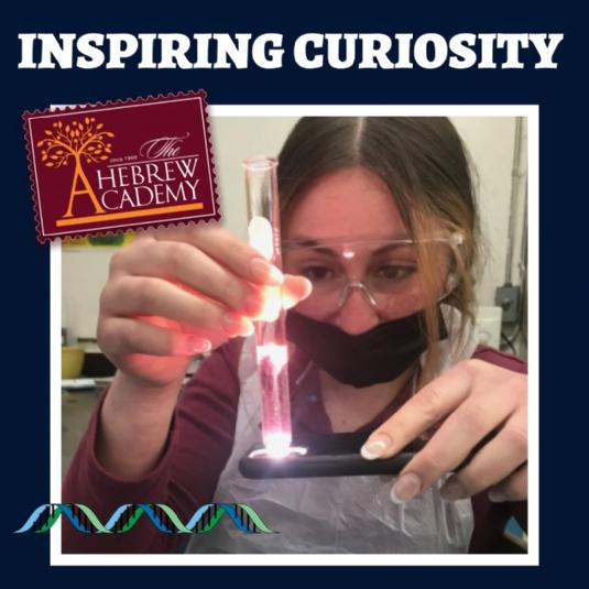 Inspiring Curiousity.jpg