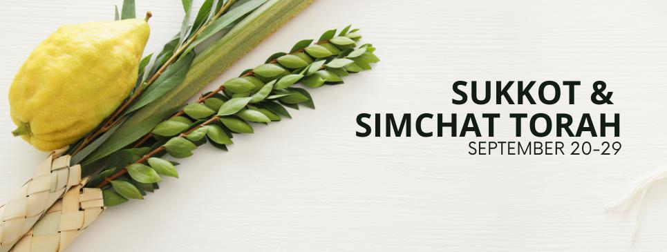 Sukkot banner website.png