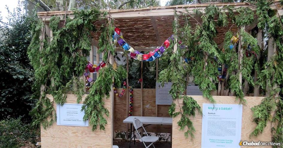 Utilizing tools old and new, Chabad-Lubavitch centers across the globe are putting the finishing touches on their coronavirus-safe Sukkot plans. (File photo)