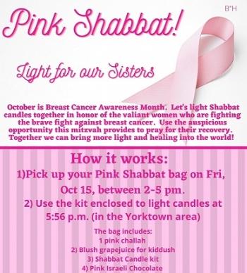 Pink Shabbat Bag